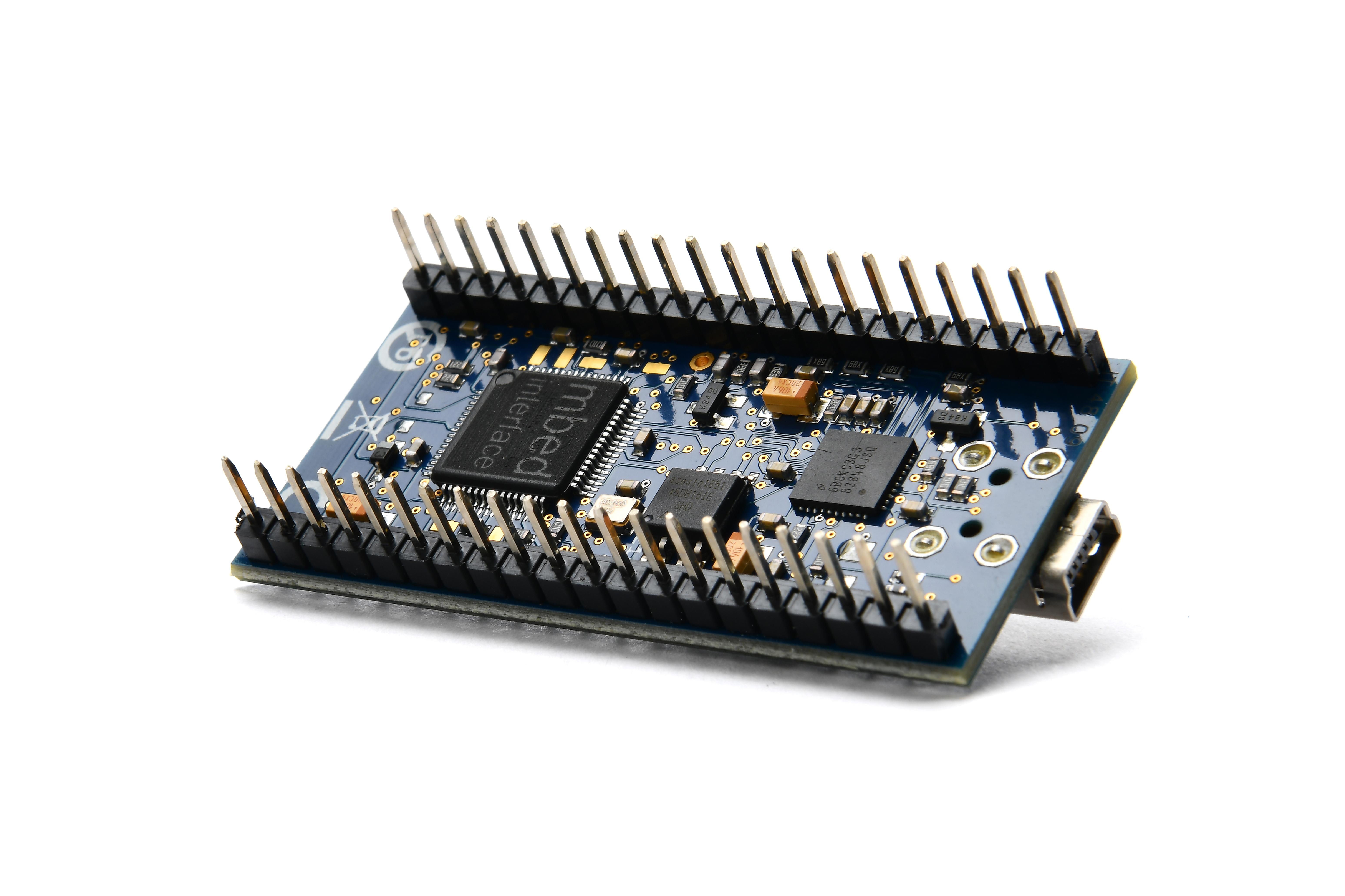 ARM mbed LPC1768 Modulo