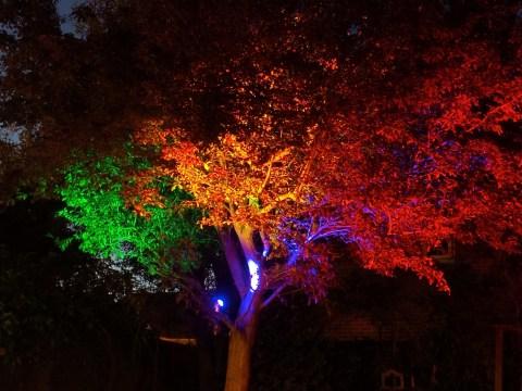 Intelligent Garden Lights with WebThings Gateway